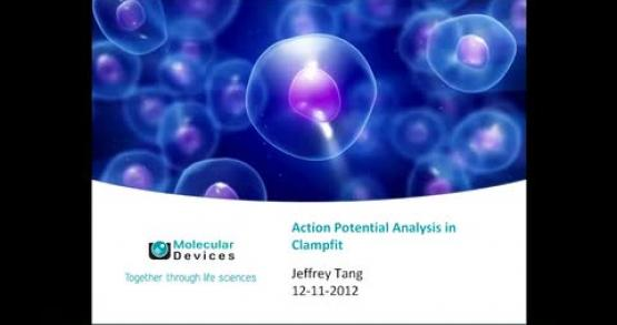 Action Potential Analysis in Clampfit Module