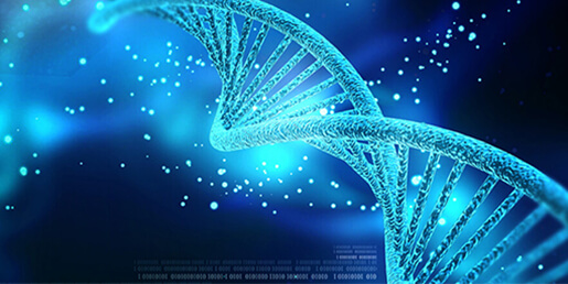 DNA/RNA Quantitation